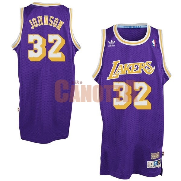 Replica Maglia NBA Los Angeles Lakers NO.32 Wesley Johnson Porpora